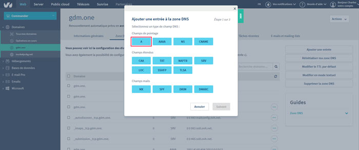 configdns4 - Configurer votre site Wordpress sur un serveur optimisé pour la vitesse