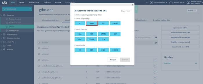 configdns6 - Configurer votre site Wordpress sur un serveur optimisé pour la vitesse